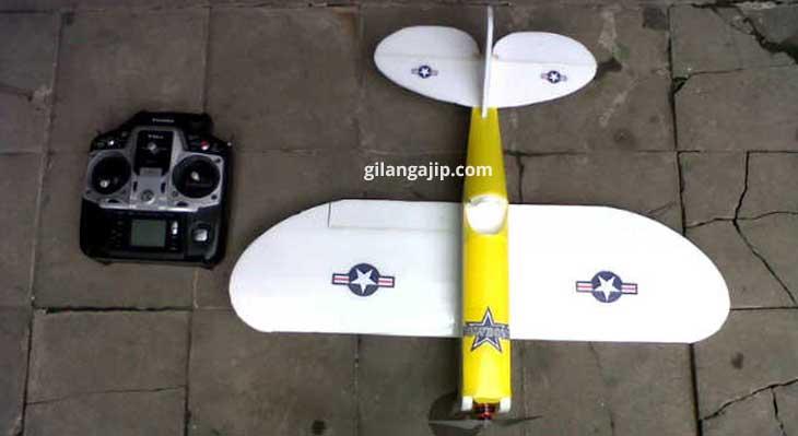 mini mighty pesawat gabus RC Plane